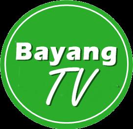 Bayang Reka Television